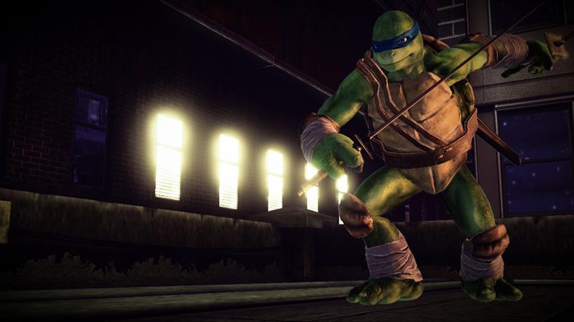 Cada tortuga mantiene intacta su personalidad: Leonardo es el líder maduro y responsable que ve por sus hermanos; Donatello es el sabiondo que crea los gadgets del equipo; Rafael es el rebelde que piensa que puede hacer todo solo; y Miguel Angel es el alegre y extrovertido e hiperactivo
