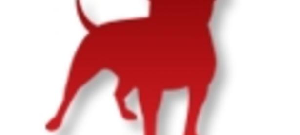 Zynga pierde a su director de operaciones