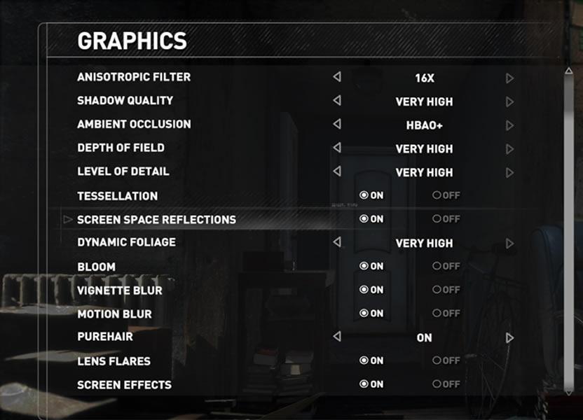 Aquí, algunas de las opciones gráficas del juego