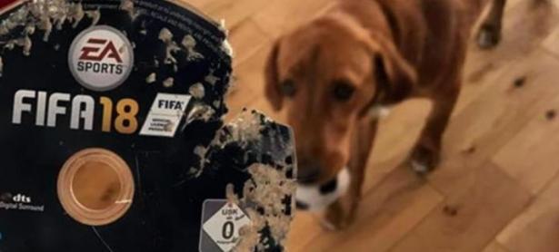 Su perro destruyó disco de <em>FIFA 18</em> y Amazon se lo repuso gratis