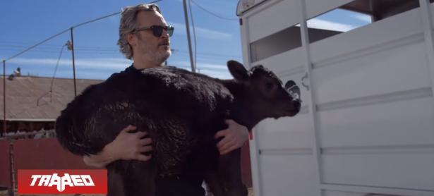 Joaquin Phoenix rescata a un ternero y su mamá del matadero