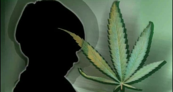 the legalization of marijuana for all purposes Amendment 2: the medical marijuana and veteran healthcare services initiative would legalize medical marijuana for medicinal purposes, tax all sales at 4 percent, and allocate funds for healthcare services for veterans  mandating their marijuana legalization initiative is placed on the ballot nov 6, 2018.