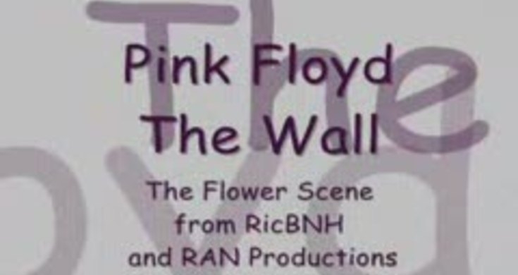 Pink floyd the wall flower scene what shall we do now videos pink floyd the wall flower scene what shall we do now videos metatube mightylinksfo