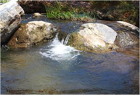 Rancho San Carlos near Ensenada offers eight natural pools with hot springs, and cabins for overnight lodging.