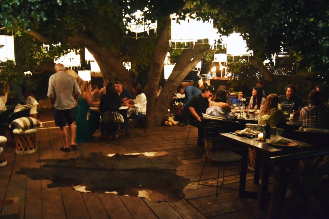 Farm To Tree Dining At Animal 243 N In Valle De Guadalupe