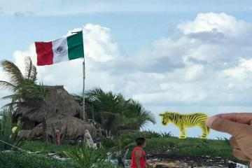Tijuana Among Mexicos 10 Most Popular Cities on Instagram