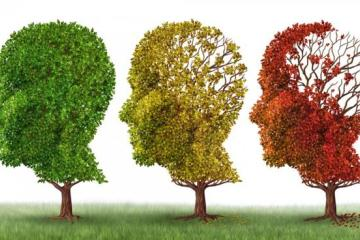 A Few More Words on Alzheimers Prevention: Tap water? Caviar?...