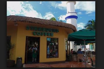 Starbucks planea vender alcohol en México