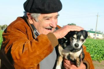 Murió Manuela, fiel mascota de Mujica que tenía 3 patas