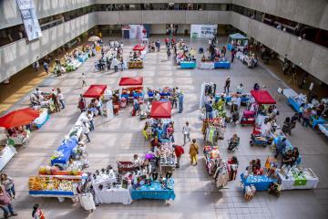 Presenta Colectivo Emprendedor TK, productos locales en Palacio...