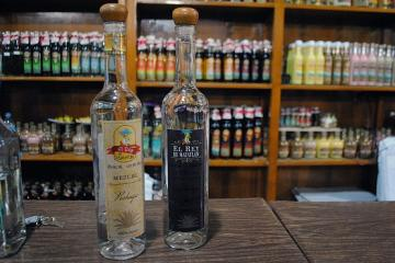 Tijuana to Host a Mezcal Party!