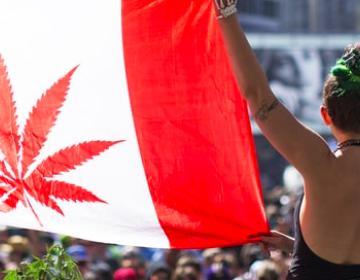 Ahora en Canadá se podrá fumar marihuana legalmente