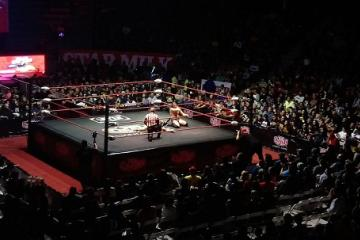 Wrestling is Already a Cultural Heritage of Mexico