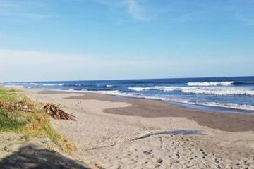 Alertan sobre peligro en playas de San Diego