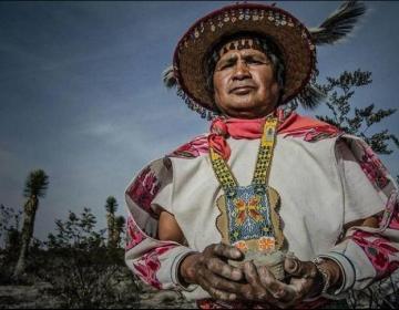 Wixarika activista asesinado en México