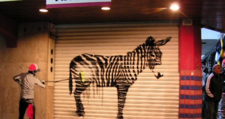 Tijuana Donkey Show Sandiegored Com