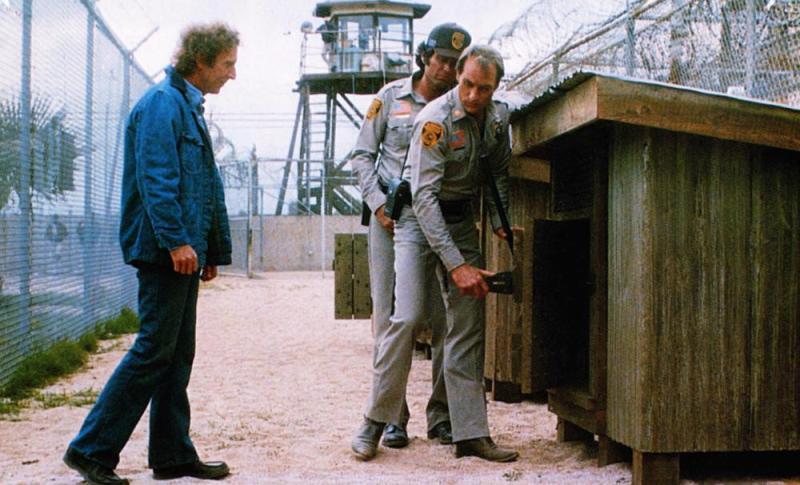 Resultat d'imatges de Locos de remate (1980)