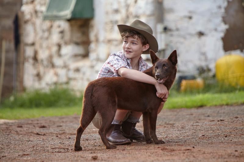 Red Dog: True Blue (2016)