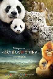 Nacidos en China