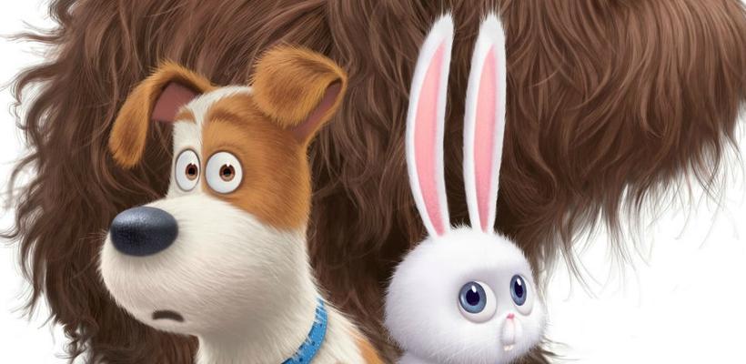 Mira el trailer de La Vida Secreta de tus Mascotas