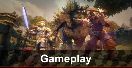 Fable Anniversary: Gameplay