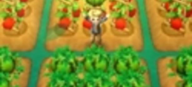 Nuevo Harvest Moon llegará a América como Story of Seasons