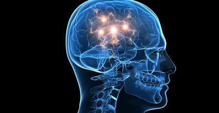 Jugadores compulsivos tienen red neuronal hiperconectada