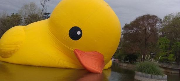 Salva al Pato de Hule gigante en este videojuego chileno