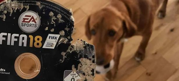 Perro destroza copia de <em>FIFA 18</em> y Amazon la repone sin costo
