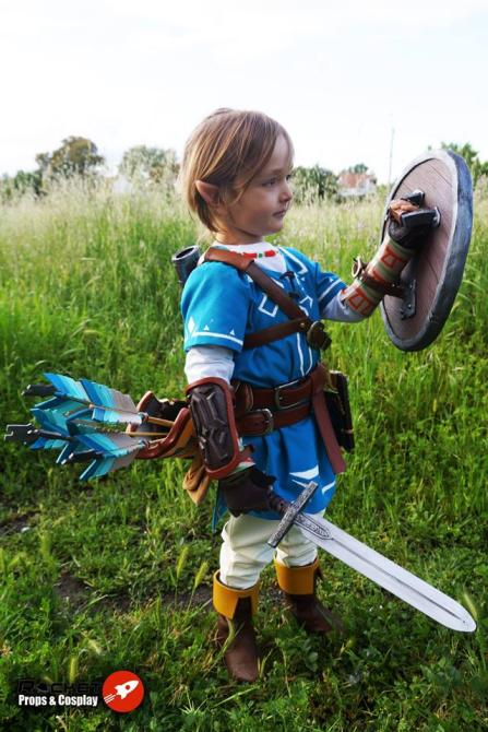Breath of the Wild Cosplay