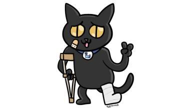 Comunidades y personalidades gamer se unen para campaña a favor del gato Lemmy