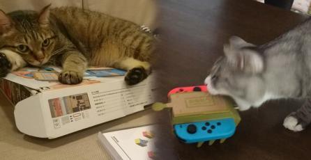 Los gatos han decidido que aman <em>Nintendo Labo</em>