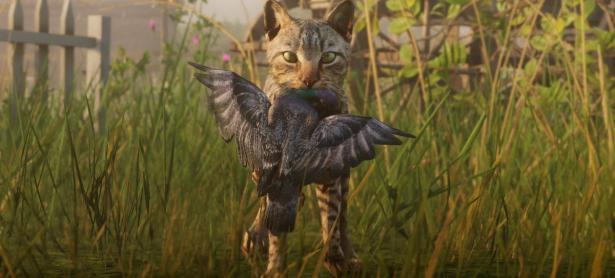 Jugadores de Red Dead Redemption molestos por no poder adoptar gatos