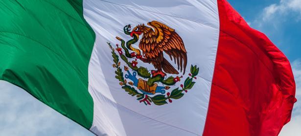 Curada Studios busca impulsar el desarrollo de apps en México