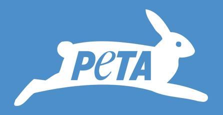 PETA transmite mensaje aprovechando el hype por <em>Pokémon Sword & Shield</em>