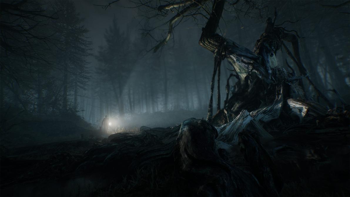 Blair Witch en imágenes