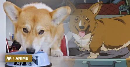 Netflix presentó al perro que interpretará a Ein en Cowboy Bebop