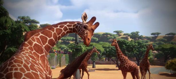 <em>Planet Zoo</em>: el hermano animal de <em>Planet Coaster</em>