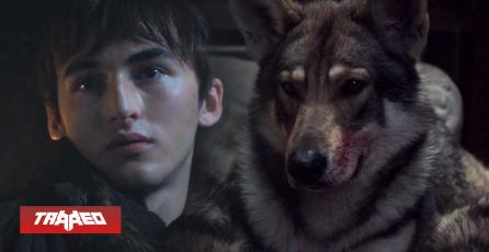 Fallece de cáncer Odín, el perro que interpretó a 'Summer' en Game of Thrones