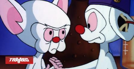 Nostalgia: Confirman el regreso de Pinky y Cerebro a las pantallas