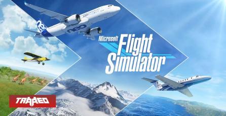 Review Flight Simulator: Volar es lo único que puedes hacer y nos encanta
