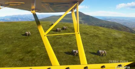 Microsoft Flight Simulator – Alrededor del Mundo: África