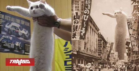 "Press F: Falleció ""longcat""  el gato más famoso de los memes"