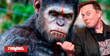 Elon Musk  y su compañía Neurolink implantan chips en simios para que jueguen mentalmente Pong