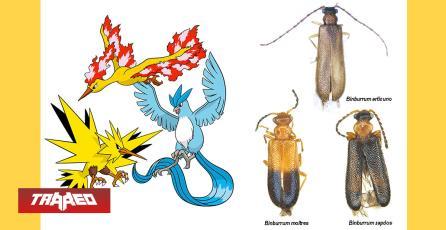 Nuevas especies de insectos fueron nombradas como Pokémon legendarios