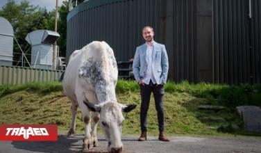 Ingenio: Este granjero convierte el excremento de vaca en energía para minar Ethereum