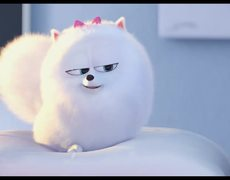 The Secret Life of Pets - Official Teaser TRAILER 1 (2016)