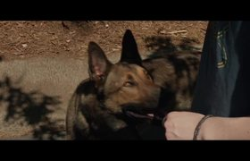 Max - Official Movie TV SPOT: This Friday (2015) HD - War Dog Drama