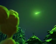 Tinkerbell and the Legend of the Neverbeast Official Movie UK TRAILER 1 2014 HD Disney Movie