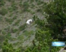 #CRAZY Goat Man Photos In Utah